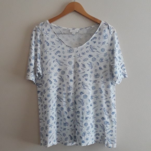 JILL M XL P Boat-neck Shirttail Tee Elbow Sleeve Top Shirt Cotton Black NEW J